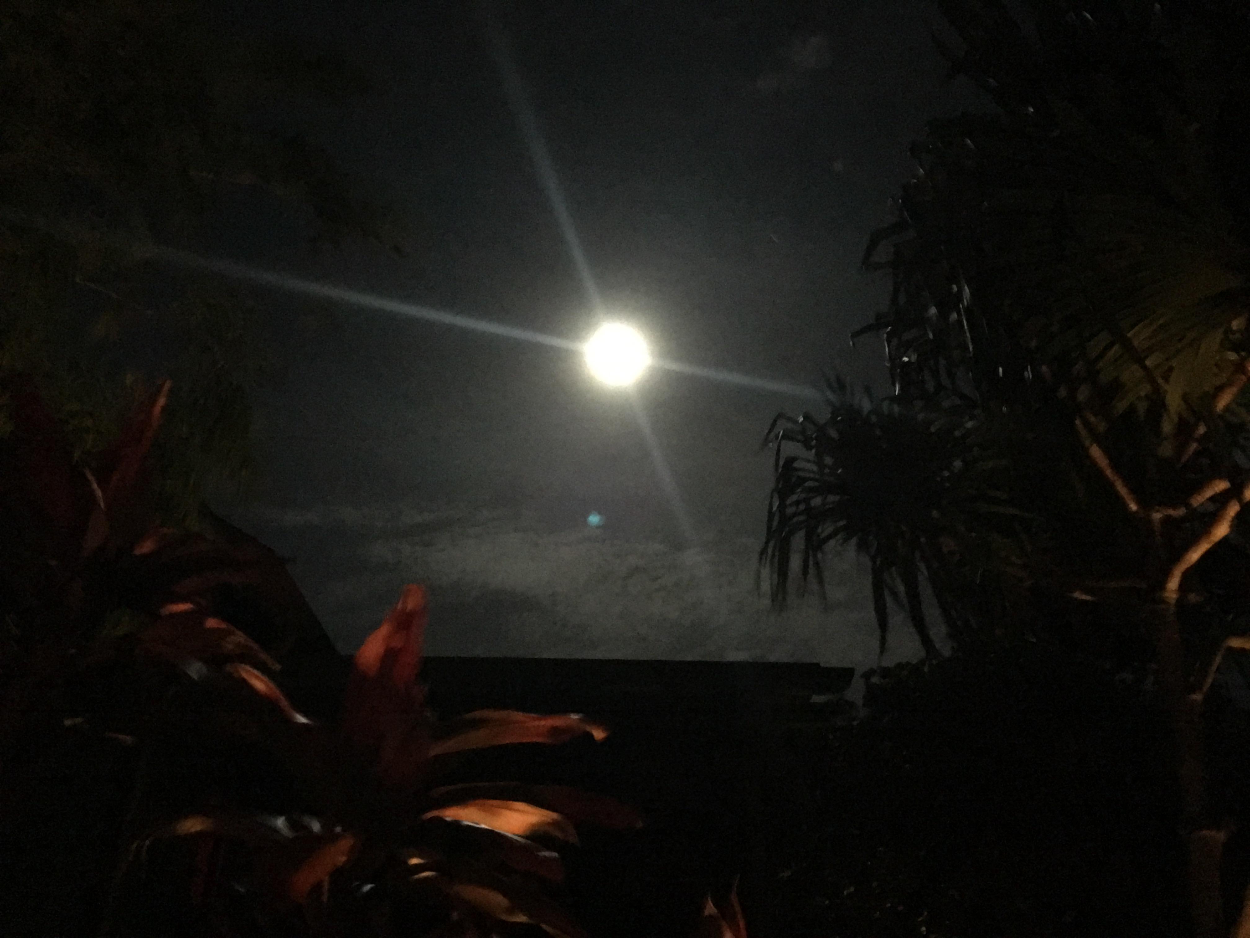 2016年9月の満月